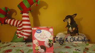Elfs Baking Christmas Cookies - Testing Great Values Holiday Cookie Kits - Accessorie Giveaway