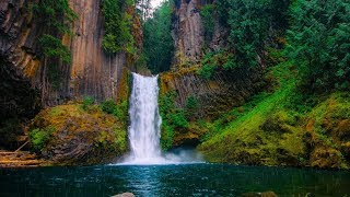 """Peaceful Relaxing Instrumental Music, Calming Meditation Music """"The Scent of Rain"""" by Tim Janis"""