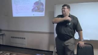 Métodos educativos dos Escoteiros do Brasil - Luiz Horn