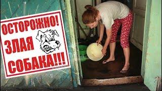 Боремся с водой! Мика TV звезда 🌟, но такая злая!