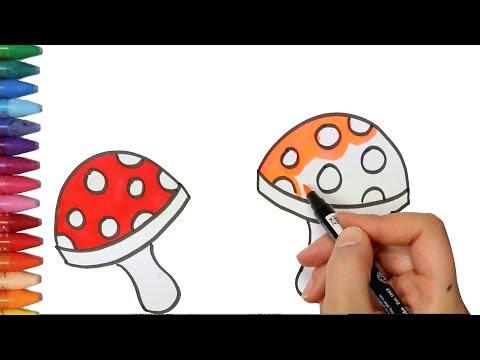 Quali i farmaci per una posizione di fungo sono