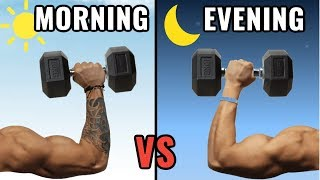 When is the Best Time to Workout to Build Muscle? (Morning vs Evening)
