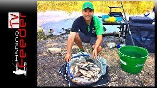 ☑️Vlog #22 Рыбалка на фидер. Ловля плотвы на малой реке. Ловля пикером в черте города 2018.