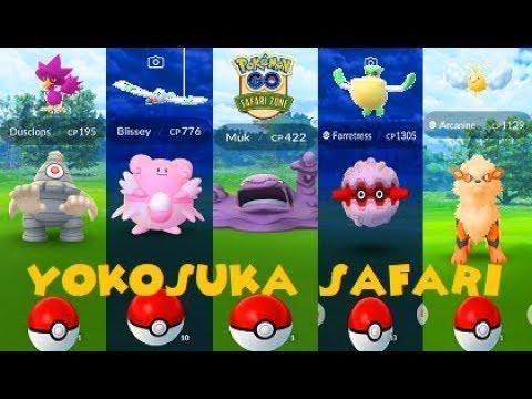 Pokemon Go Yokosuka Safari Zone - Shiny Wingull, Murkrow