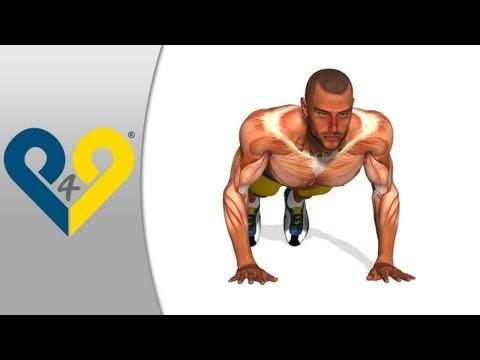 Rozwój siły w mięśniach
