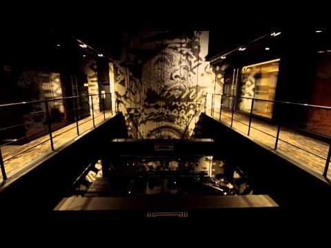Knižnica vinylov