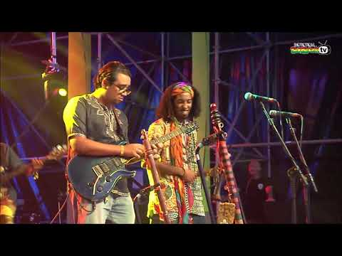 MEHDI NASSOULI live @Lion Stage 2017