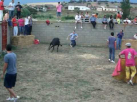 vaquillas de villalba de los llanos 2010 (polvorete)