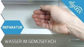 Bomann Kühlschrank Wasserablauf : Kühlschrank kaufen u2013 tipps vom profi Самые лучшие видео
