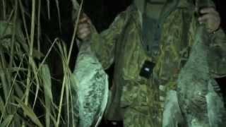 Смотреть онлайн Вечерняя и утренняя охота на утку и фазана