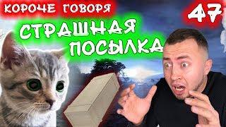 КОРОЧЕ ГОВОРЯ, СТРАШНАЯ ПОСЫЛКА / Бездомный котенок Лайки 47