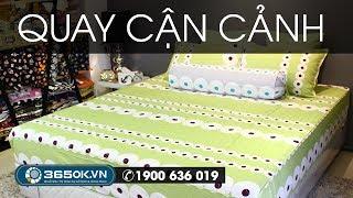 Bộ ra giường chần bông cotton lụa cực đẹp mang 100 chất