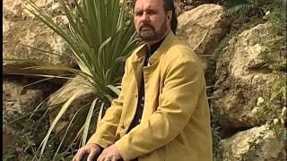 Dean Martin Medley - Frank Ferrari