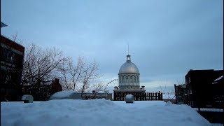 #889 Welcome to MONTREAL Canada! - Jordan The Lion Daily Travel Vlog (1/12/19)