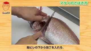ロングバージョン小川貢一「築地魚河岸三代目小川貢一の魚河岸クッキング・レシピ」|ウチノヨメ
