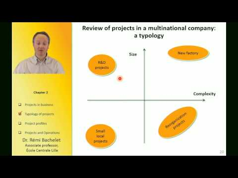 Projects in business