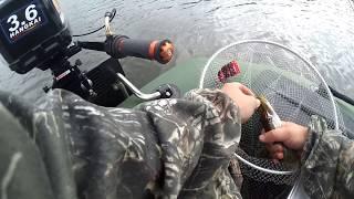 Клев рыбы на неделю в тульской области