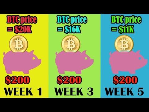 Bitcoin trader profit