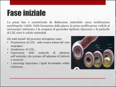 Panrusso Congresso arteriosa