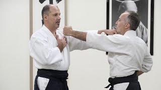 Iriminage | Philip Greenwood On Nishio Aikido