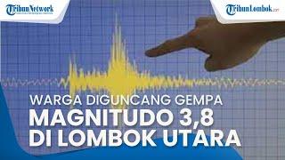 Warga Diguncang Gempa Magnitudo 3,8 di Lombok Utara, Berada pada Kedalaman 8 KM