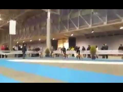 Spanish National Specialty 2015