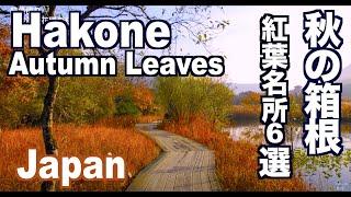 AutumncolorsinHakone秋の箱根の紅葉名所箱根観光紅葉便り日本の秋