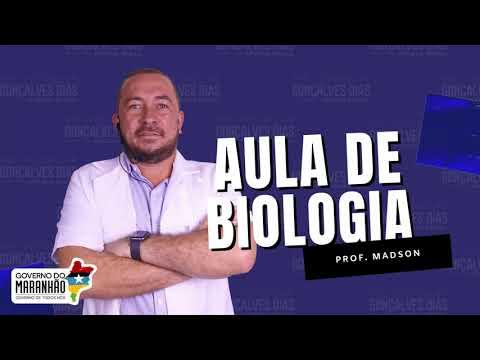 Aula 05 | Evolução Biológica - Parte 01 de 03 - Biologia