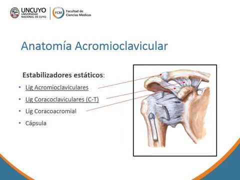 Bursita intrapatelară a simptomelor articulației genunchiului și tratament