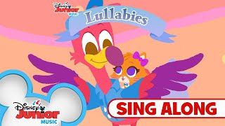 Sing Time to Fly with T.O.T.S. 🐦 | 🎶Disney Junior Music Lullabies | Disney Junior