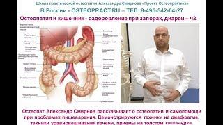 Остеопатия и кишечник – оздоровление при запорах, диареи, метеоризме