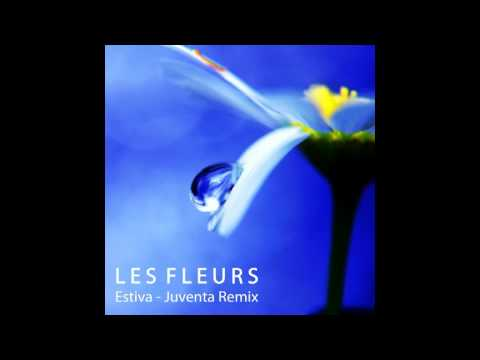 Estiva - Les Fleurs (Juventa Remix) Original