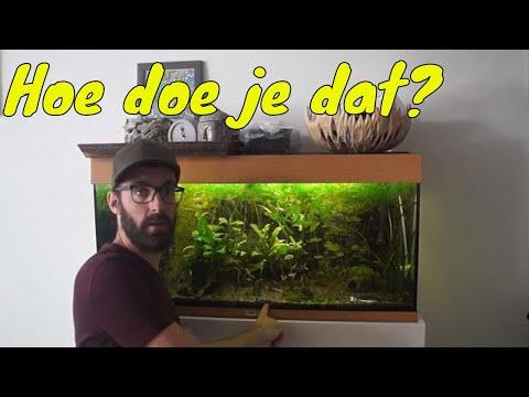 Aquariumbodem vervangen in een draaiend aquarium