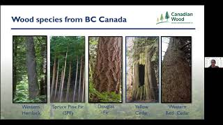 The 6th Canadian Wood Webinar: Using Sustainable Wood Is A Collective Responsibility