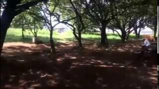 赤羽自然観察公園のイメージ