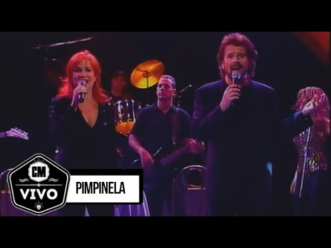Pimpinela video CM Vivo 2001 - Show Completo