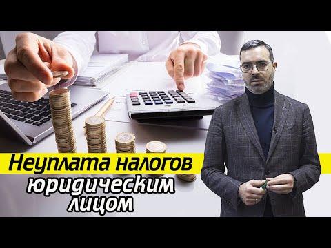 Налоги юридических лиц | Какое грозит наказание за неуплату налогов