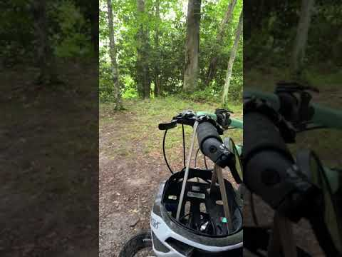 Video Of Greenbrier River Trail Mile Post 28.5 Primitive Campsite, WV