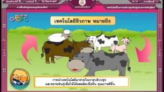 สื่อการเรียนการสอน เทคโนโลยีในการปรับปรุงพันธุ์ และขยายพันธุ์สัตว์ม.3วิทยาศาสตร์