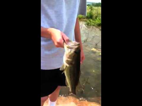 Bass Fishing Ponds Part 1/4