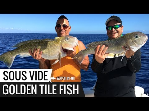 Sous Vide GOLDEN TILE Fish Recipe! Ninja's Catch n Cook.