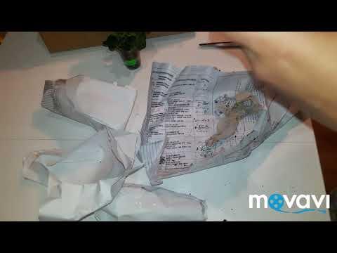 Распаковка посылки с растениями (черенки пеларгоний) unboxing