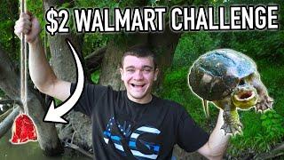 $2 Walmart FISHING CHALLENGE! (ROADKILL BAIT)
