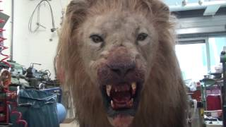 Animatronic Lion