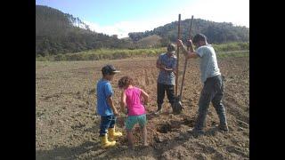 Agricultura - Sucessão rural e incentivo à permanência da juventude no campo. - None