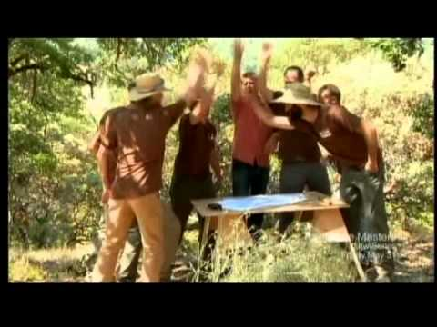 Video trailer för Animal Planet Treehouse Masters - Trailer for Season Premiere May 31, 2013 10pm ET