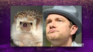 MARTIN FREEMAN Looks Like A Hedgehog - The Graham Norton Show On BBC AMERICA