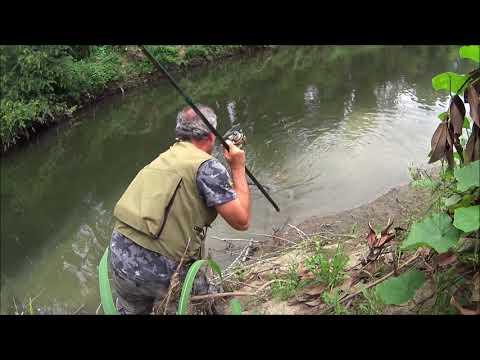 Pesca del 2013 di giochi