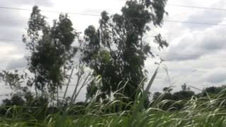 preview picture of video 'Natural Beauty of Bangladesh Village'
