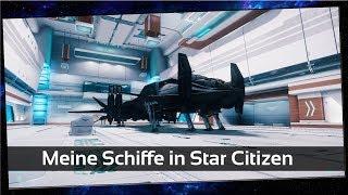 Meine Schiffe in Star Citizen [Deutsch]